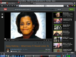 Gang Stalking ~ What Every TI Should Listen To