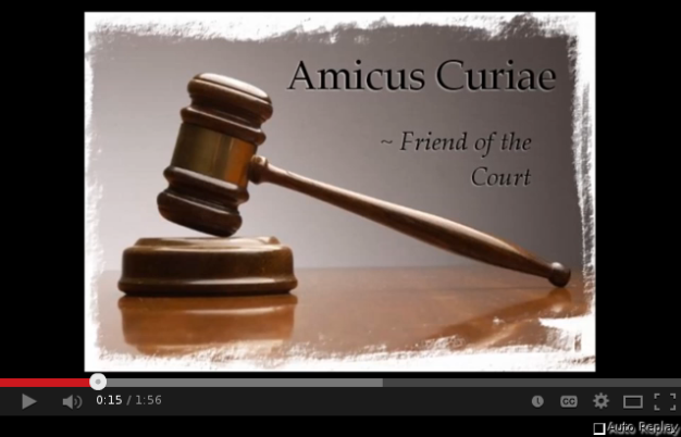 Amicus on Youtube