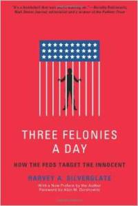 Three Felonies A Day book