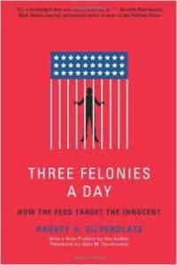 Three Felonies A Day book
