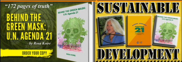 Behind The Green Mask UN Agenda 21 book cover