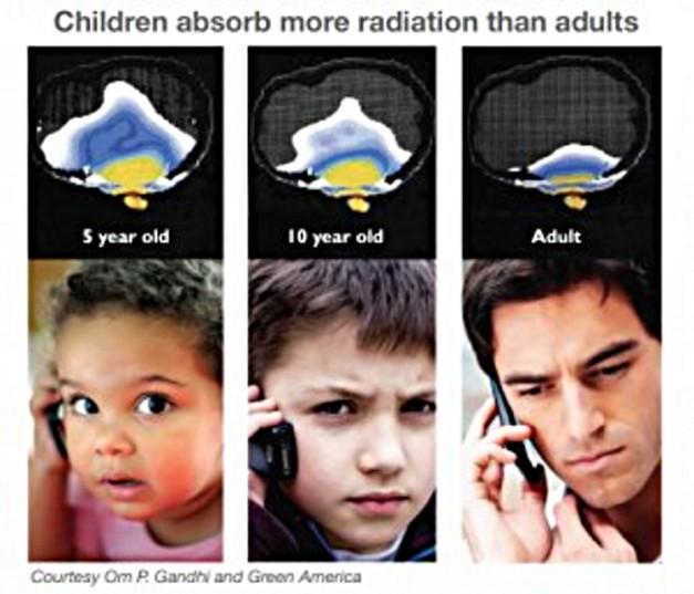 Child_Brain-300x257