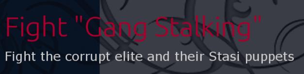 fightgagnstalking-videos logo(2)