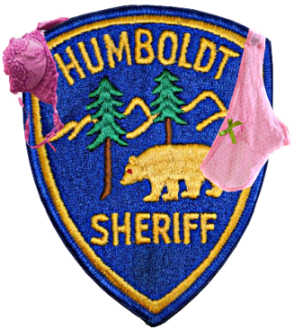 Humbolt_patch_panties_bra