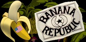 Bananna Republic American Flag4