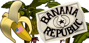 Bananna Republic American Flag4