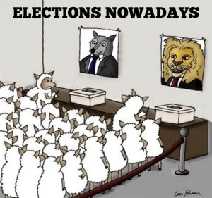 Elections_nowadays_Sheeple